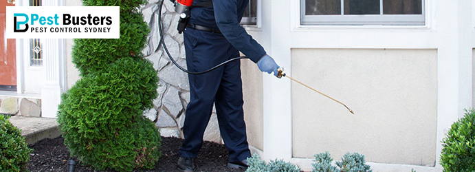Best Pest Control Woodpark