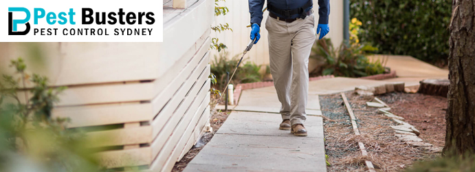 Pest Control Seaford Heights