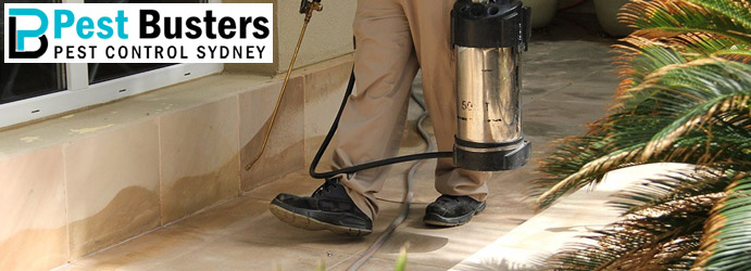 Professional Pest Control Services Stonequarry